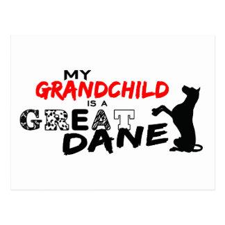 ¡Mi nieto es great dane! Postal