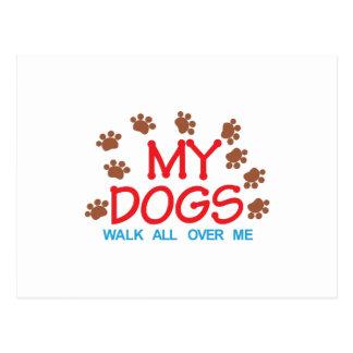 Mi paseo de los perros postal