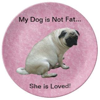 Mi perro no es barro amasado gordo plato de cerámica