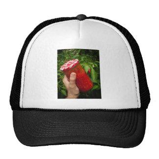 Mi tarro del chile gorra
