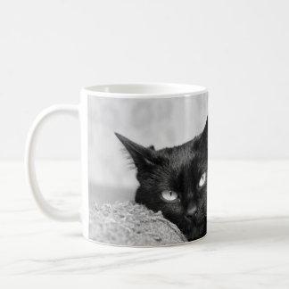 Mi taza de la foto del gato negro