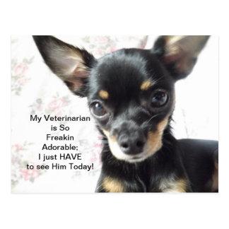 Mi veterinario es TARJETA adorable de la cita Postal