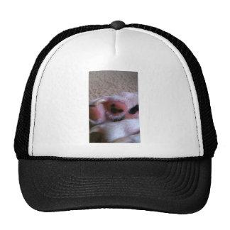 Mickey ocultado gorras de camionero