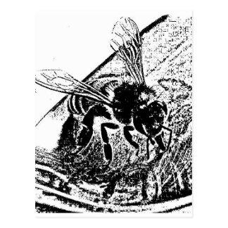 miel del sorbiendo del abeja postal