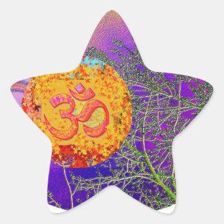 Milagros de la ESTRELLA - fecha de la reserva para Pegatinas Forma De Estrella Personalizadas