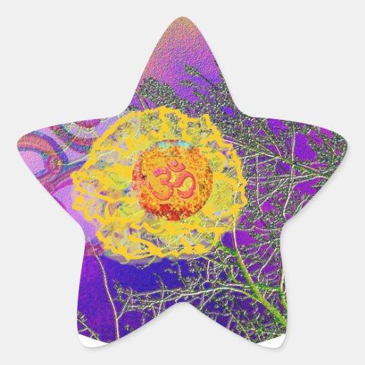 Milagros de la ESTRELLA - fecha de la reserva para Calcomanías Forma De Estrellas Personalizadas
