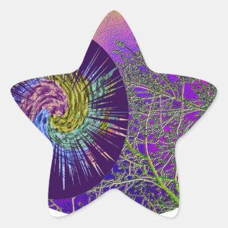 Milagros de la ESTRELLA - fecha de la reserva para Calcomanía Forma De Estrella