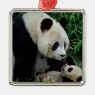Mime a la panda y al bebé en el arbusto de bambú,  ornamento para arbol de navidad