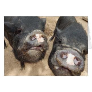 Mini cerdos personalizados del negro doble de los tarjeta de felicitación