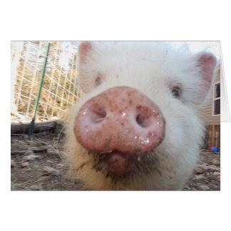 Mini hocico personalizado del cerdo tarjeta de felicitación