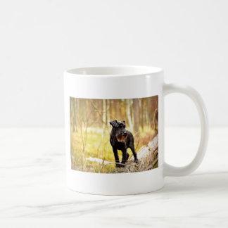 miniatura-schnauzer taza de café