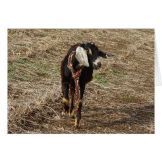 Minnie la cabra de Nubian, tarjeta de Navidad