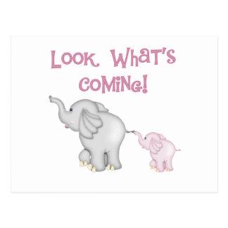 Mirada de los elefantes rosados qué está viniendo postal