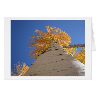 Mirada para arriba de la tarjeta de felicitación