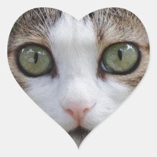 Mire a mi pegatina del corazón de los ojos