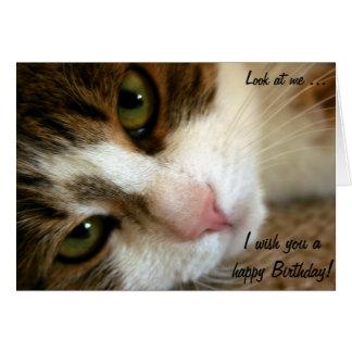 ¡Mire! Tarjeta del feliz cumpleaños con el gato