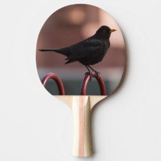 Mirlo Pala De Ping Pong