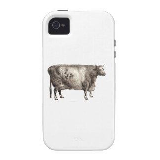 Mis bóvidos del mascota (Bull o vaca) iPhone 4 Carcasa