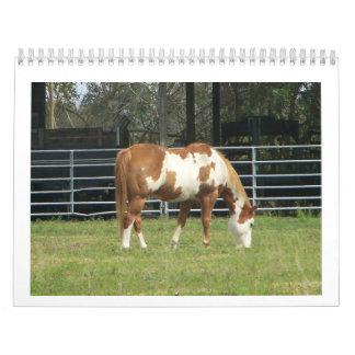 Mis fotos preferidas calendarios