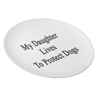 Mis vidas de la hija para proteger perros plato de cena