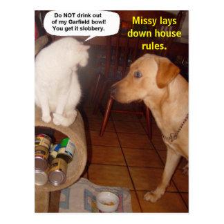 Missy coloca reglas de la casa postal
