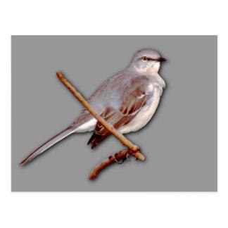 Mockingbird Postal