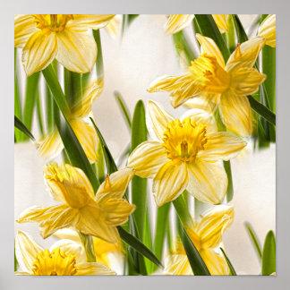 Modelo amarillo del papel pintado del narciso póster