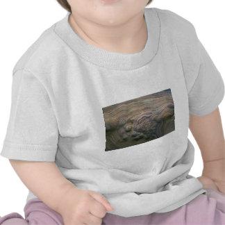 Modelo de la erosión en piedra arenisca camiseta