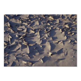 Modelo de la erosión invitación 12,7 x 17,8 cm
