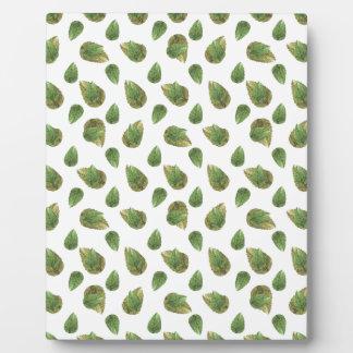 Modelo de la naturaleza del adorno de las hojas placa expositora