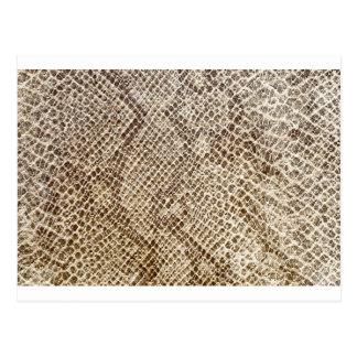 Modelo de la piel del reptil postal