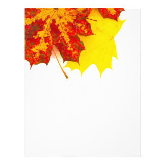 Modelo de las hojas de otoño folleto 21,6 x 28 cm