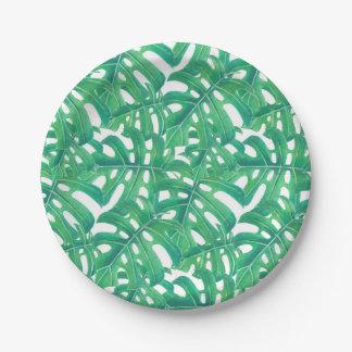 Modelo tropical de las hojas del monstera verde plato de papel