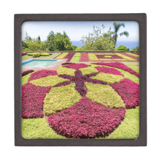 Modelos y formas coloridos hermosos en jardín joyero