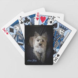 Mojón Terrier - naipes del póker