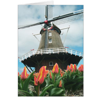 Molino de viento de los tulipanes de la primavera tarjeta
