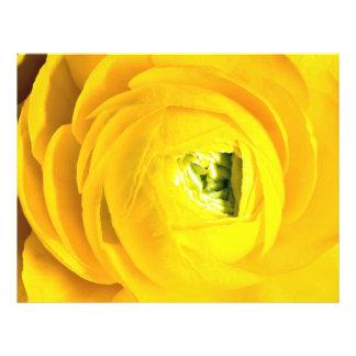 Momia amarilla primer tarjeta publicitaria