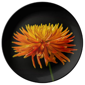 Momia amarilla y anaranjada de la araña en negro plato de porcelana