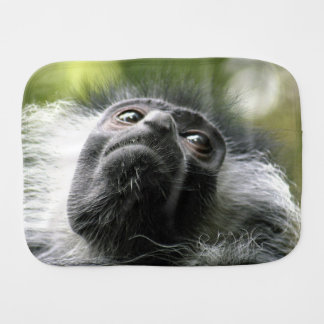 monkey-52 paños para bebé