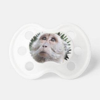 mono adorable chupetes de bebé