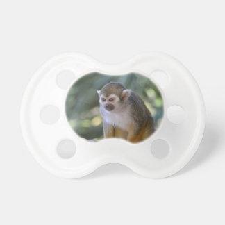 Mono de ardilla asombroso chupetes de bebe