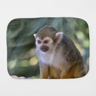 Mono de ardilla asombroso paños para bebé