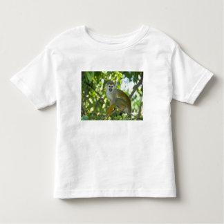 Mono de ardilla común (sciureus) del Saimiri Río Camisetas