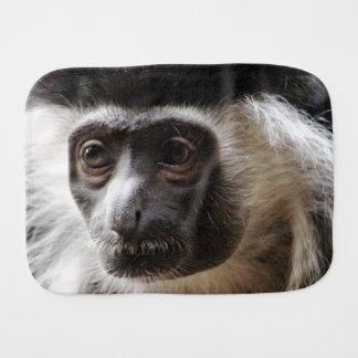 Mono de Colobus lindo Paños Para Bebé