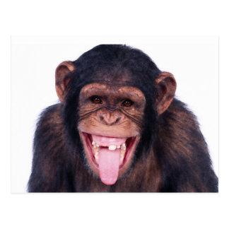 Mono de risa postal
