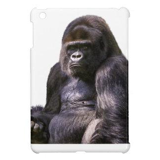 Mono del mono del gorila