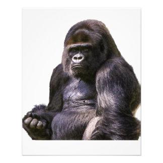 Mono del mono del gorila flyer