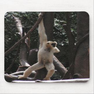 Mono divertido alfombrilla de ratones