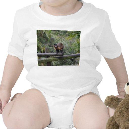 mono en cercar al primate con barandilla triste traje de bebé