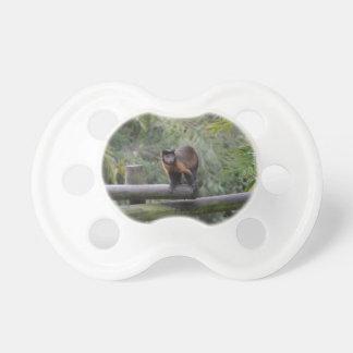 mono en cercar al primate con barandilla triste chupete de bebé